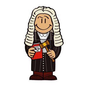memoria usb juez