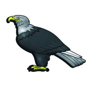 Usb águila