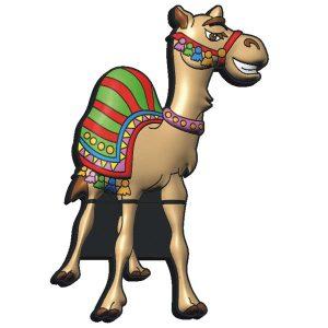 Usb camello