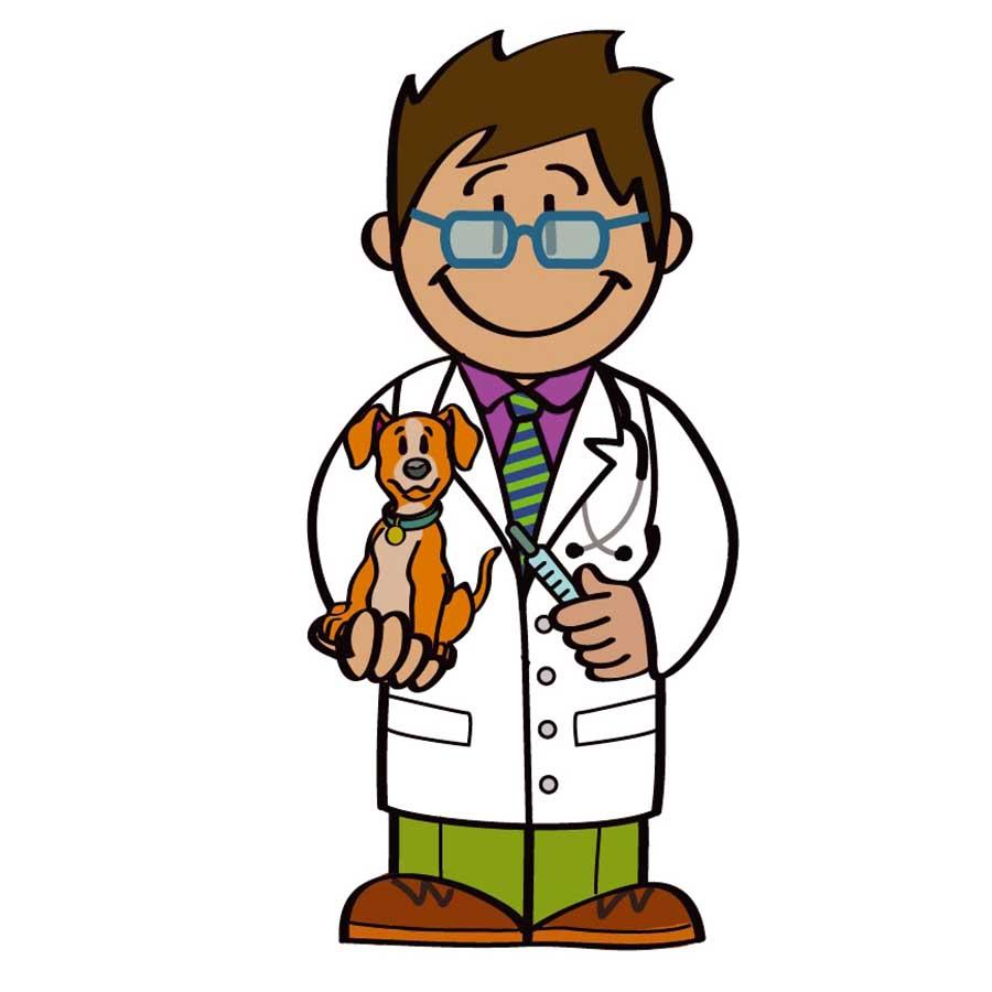 regalos para veterinario